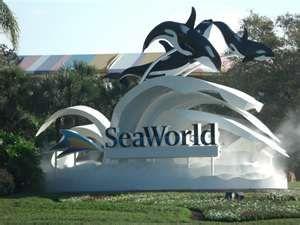SeaWorld Orlando, FL