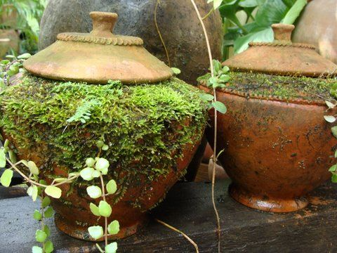A beautiful Thai tradition that still lives on...Clay Water Jars are used to offer a cool drink to passers by. We have 'em, minus the moss. Get your garden tradition started here at Big Grass.    www.BigGrassLivin...
