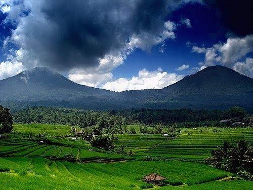 Pemandangan Terindah Di Bali Tidak Hanya Alam Pantainya Saja Yang Menampilkan Panorama Cantik Tapi Di Setiap Pelosok Pulau Bali Te Pemandangan Pantai Pedesaan