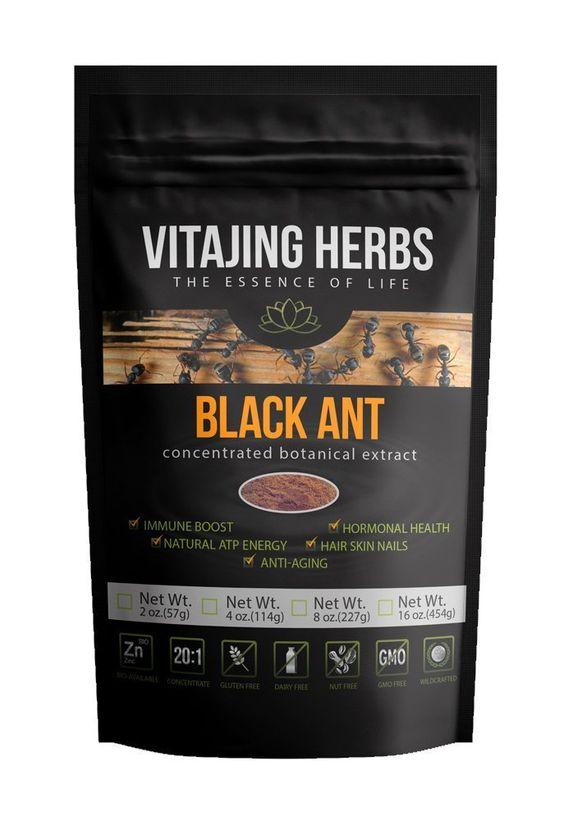 Polyrachis Black Ant Extract Powder 20:1 Superfood | Herb of Kings - VitaJing Herbs