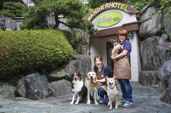 Kinugawa Onsen, Nikko City, Tochigi Prefecture Nikko Kinugawa Hotel Mikazuki Official Website