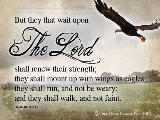 Image result for image waiting upon the lord in faith