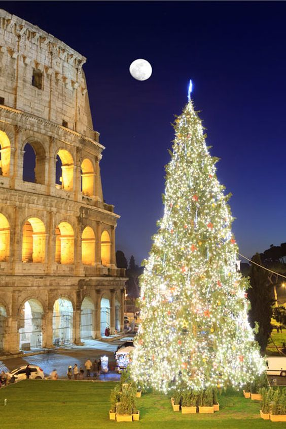Christmas in Colosseum, Rome!! #Christmas #rome #italy