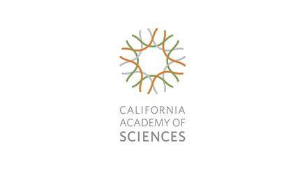 California Academy of Sciences logo | Kit Hinrichs