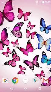 Resultado de imagem para imagens borboletas png