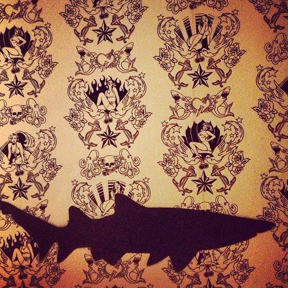 Shark attack. #wallpaper #catch