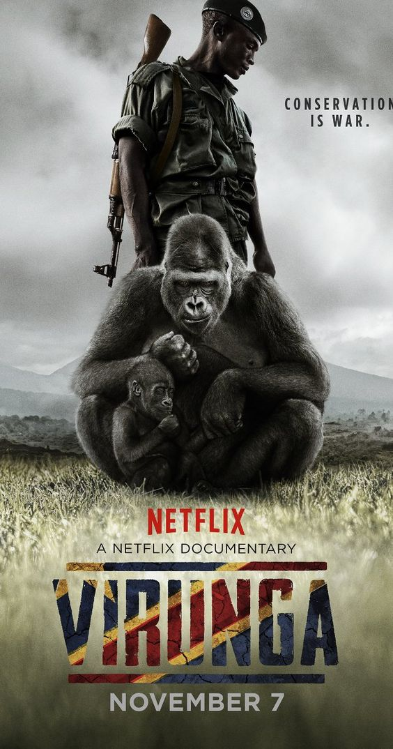 Directed by Orlando von Einsiedel. A group of brave individuals risk their lives to save the last of the world's mountain gorillas; in the midst of renewed civil war and a scramble for Congo's natural resources.