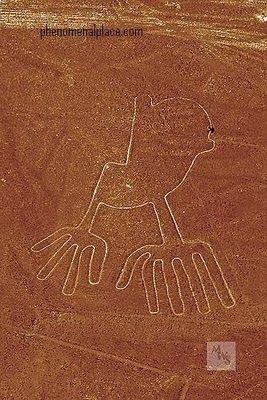 las pistas de Nazca. 04a735d5492855728883456c46fd9d83