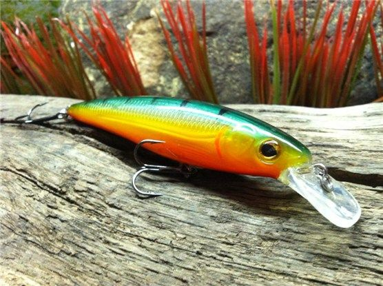 Winter bass fishing lures tips and tactics anything for Winter bass fishing tips