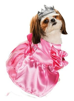 Bat Costume for Dogs: Princess Halloween Costume for Dogs