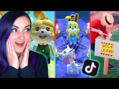 Animal Crossing Tiktok Memes That Are Actually Funny Youtube Animal Crossing Animal Crossing Memes Funny Animal Memes
