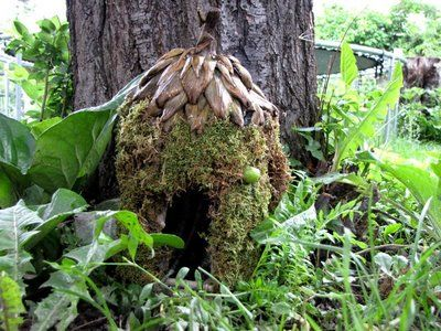 I have been looking for a fairy house for a fairy garden ornament I have, this would look great and interesting to the children.