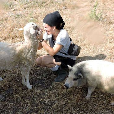 Workaway in Spain. Help out a farm animal shelter in Tarifa, Spain
