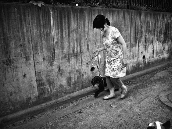 Woman walking her dog - Tatsuo Suzuki Photography