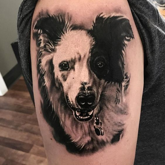 Border Collie Tattoos Ideas With Images Dog Tattoos Border