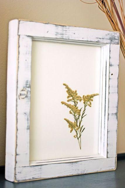 Es Paperets: Flores secas o Prensadas. Para decorar, para regalar, para…