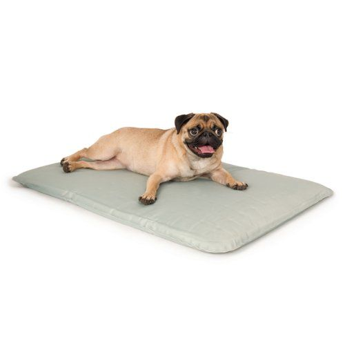 K H Cool Bed Iii Cooling Dog Bed Medium 22 Inches By 32 Inches
