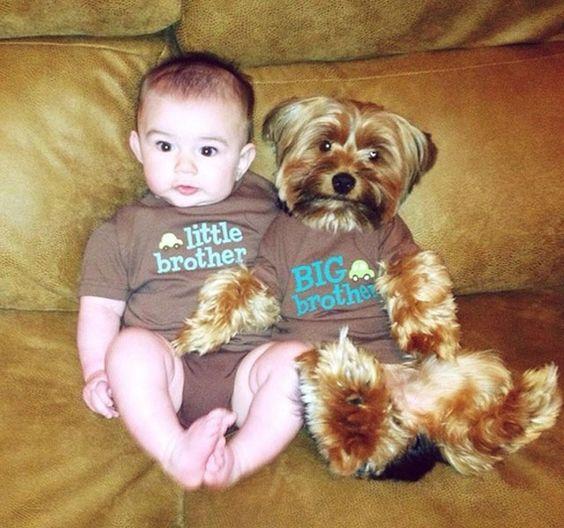 foto-adorable-de-perro-y-nino: