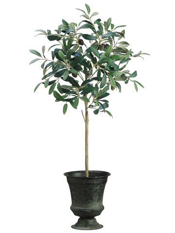 This faux is pre-potted in a tin urn and real look soil. This Olive Floor Foliage Tree in Tin Urn will grace any corner of your room beautifully. Olive trees are difficult to grow indoors, so why not give this low maintenance faux tree a try.