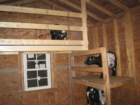 Goat Barn Idea I Dont Have Goats Why Am Pinning This