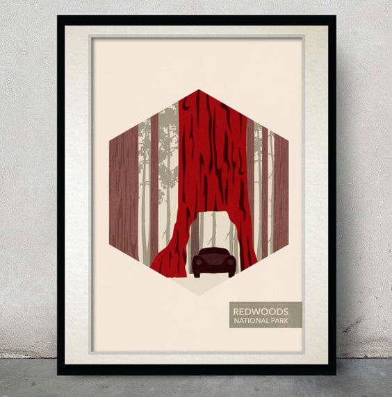 National Park Poster  Redwoods National Park  by MMcKinneyDesigns