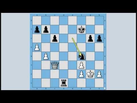 Neverovatni I Neponovljivi Magnus Zrtva Dame Stefansson Vs Carlsen 1101 Youtube Scrabble Games Tetris