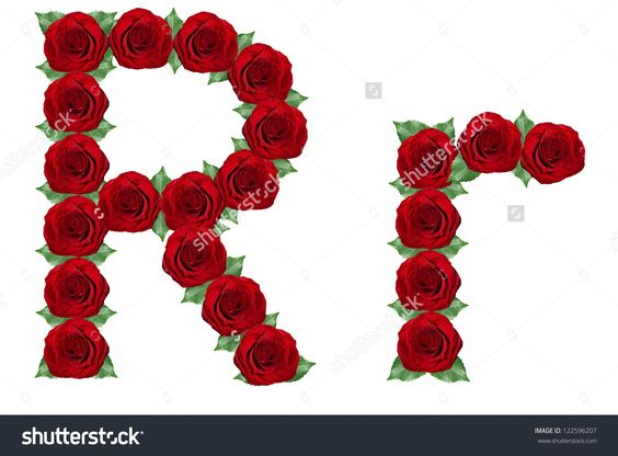 stock-photo-alphabet-letter-r-made-from-red-roses-and-green-leaves-isolated-on-a-white-background-122596207.jpg 1,500×1,109 pixels