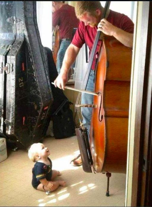 Loving the music or his double-bassist dad?
