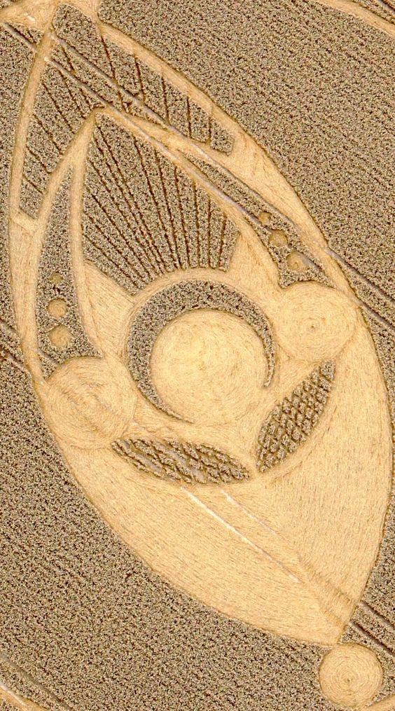 Círculos en los cultivos 04f593fa7678d8cf7ba9b64a2609907e