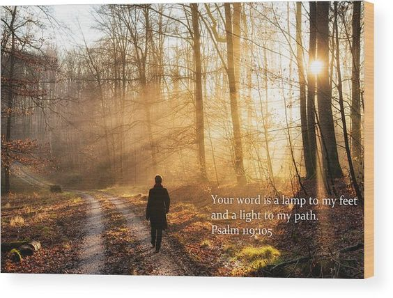 """Bible Verse Wood Print. Religious quote: Your word is a lamp to my feet and a light to my path (Psalm 119:105). Walk in the forest in January, the sun is shining through the trees, beautiful warm orange and golden light, lovely sunbeams. The image gets printed directly onto a sheet of 3/4"""" thick maple wood. Matthias Hauser - Art for your Home Decor and Interior Design."""