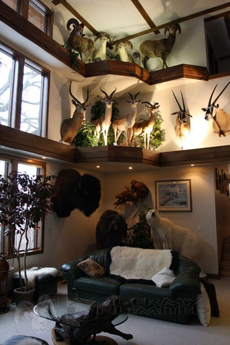 Lovely Best 25+ Trophy Rooms Ideas On Pinterest | Deer Mount Decor, Taxidermy  Decor And Camo Living Rooms