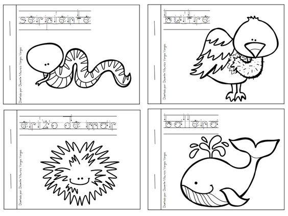 Snap Mi libro de colorear de animales salvajes 4 ANIMALES SALVAJES Y ...