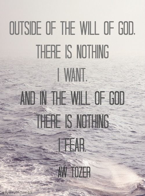 A.W. Tozer quote on the will of God - my goal: that His will be my desire, with all of my life. I will be focusing on this, and this alone.