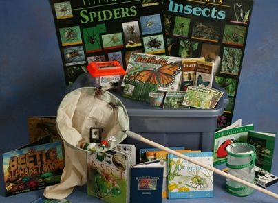Illinois Insects and Spiders Trunk on loan to Kaskaskia College Library from Illinois Department of Natural Resources