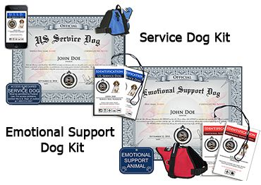 Registration for a dog...?