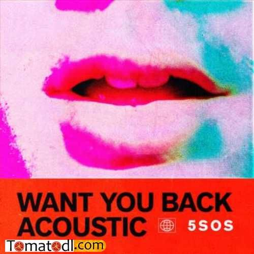 5 Seconds Of Summer Want You Back Acoustic Download Mp3 With
