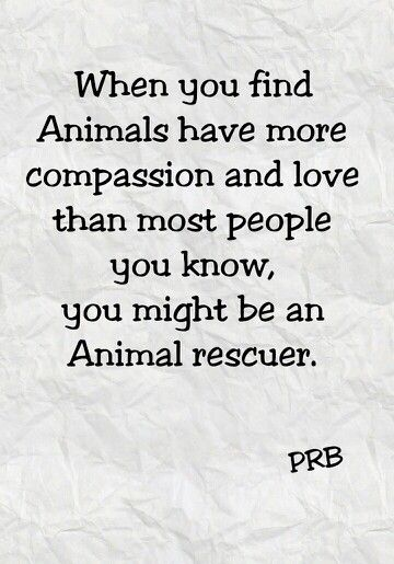 What famous person who is very very rich and just loves animals?