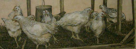 Loose Chickens | Lucky Fish Gallery