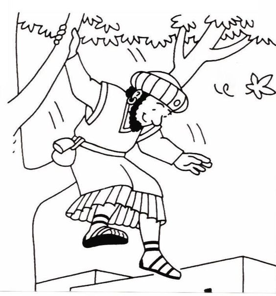 zaqueo coloring pages - photo #21