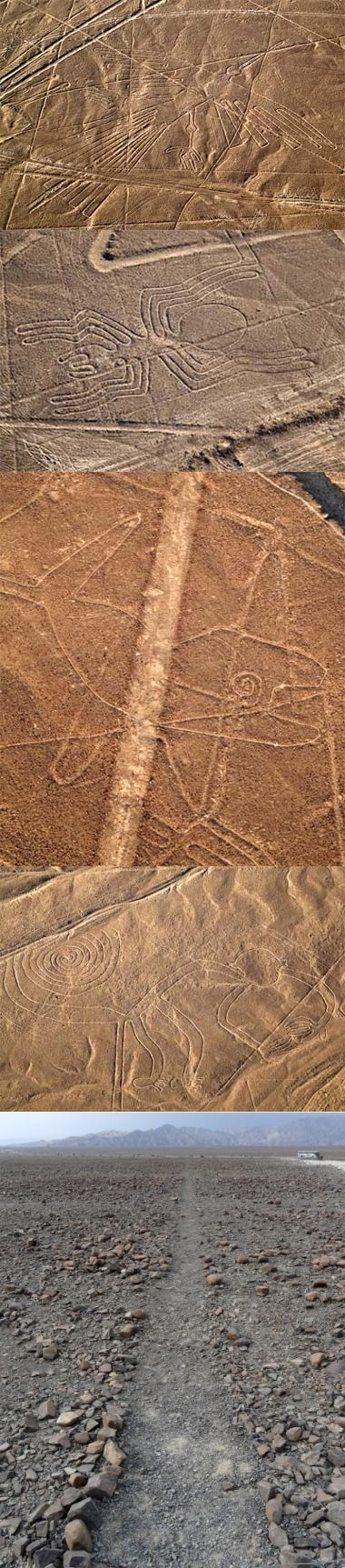The Nazca lines are a series of ancient geoglyphs located in the Nazca Desert in southern Peru. Their purpose remains unknown. The hundreds of individual figures range in complexity from simple lines to stylized hummingbirds, spiders, monkeys, fish, sharks, orcas, & lizards. The lines are shallow designs made in the ground by removing the reddish pebbles & uncovering the whitish/grayish ground beneath. Designated as a UNESCO World Heritage Site in 1994.