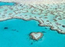 Heli Reef Heart Reef