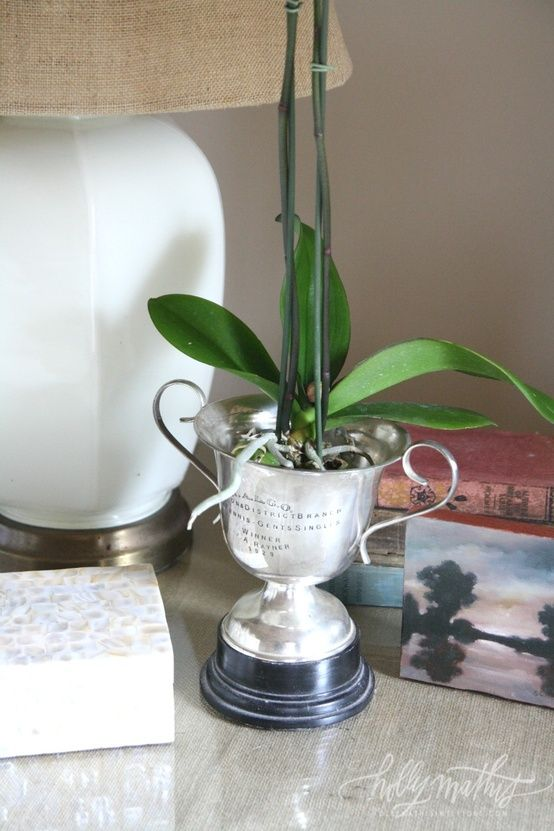 Here's a fantastic idea for the sport fan who now grows orchids! - Orchid in an old trophy