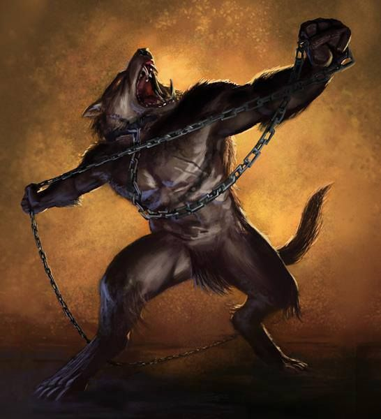 Werewolves Shifters: Werewolves By Night