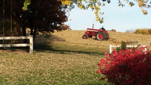 Little bit of country in my own back yard. My son watched this farmer EVERY year since he was a little kid.