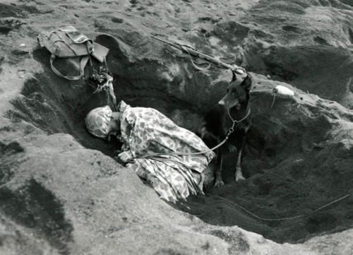 A Marine and his Doberman in a foxhole on Iwo