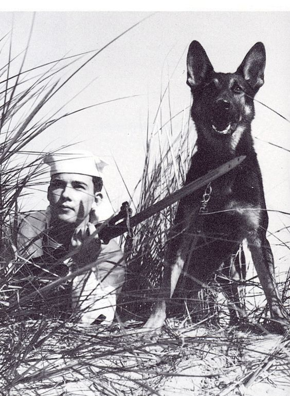 Coast Guardsman and his K-9 Partner. Beach Patrol WW2. I love that dog!: