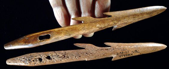 Eskimo barbed harpoon made from bone.