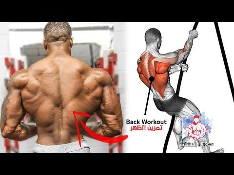 Best 7 Exercises To Increase Back Width And Amplitude Youtube Big Back Workout Trapezius Workout Leg Workouts Gym