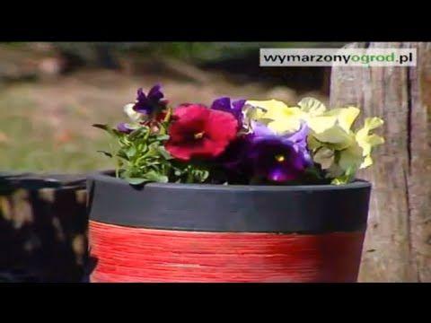 Sadzenie Bratkow W Doniczce Poradnik Muratora Youtube Planters Planter Pots Make It Yourself
