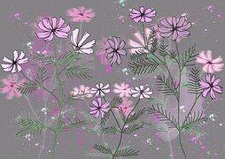 Flores, O Plano De Fundo